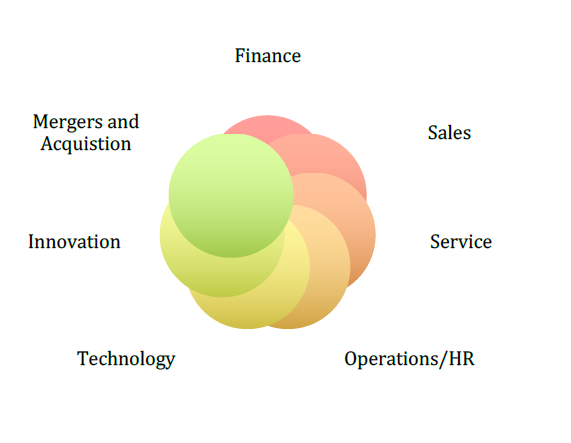 Business Leadership Fusion model